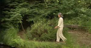 retraite spirituelle : promenade en forêt